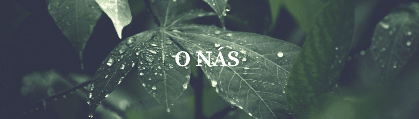 banner_o-nas